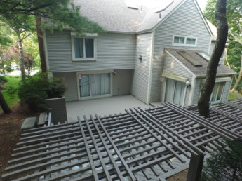 Trellis and Trex Deck